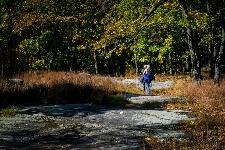 Nordic walking foto